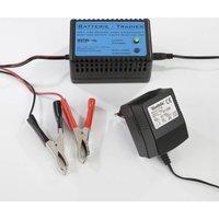 Image of Batterie Trainer - hält Ihre Batterien fit