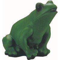 Image of Frosch mit Bewegungsmelder
