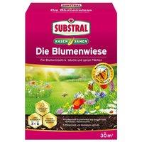 Image of Rasen- & Blumenwiesen Samen Die Blumenwiese - 300 g