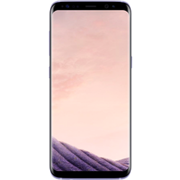 Samsung Galaxy S8 (64GB Orchid Grey Pre-Owned Grade A) at £25.00 on No contract £28.04 a month.