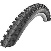 Schwalbe Dirty Dan Evo MTB Tyre