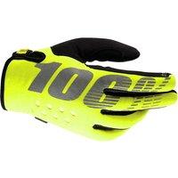 100  Brisker Cold Weather Glove AW17