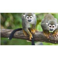 Owners aborad Local Living Ecuador—Amazon Jungle