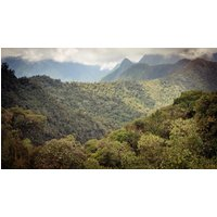 Cloud Forest Independent Adventure