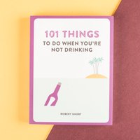 Image of 101 Things To Do When You're Not Drinking Book