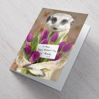 Personalised Mother's Day Card - Meerkat - Meerkat Gifts