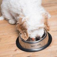 Personalised Non-Slip Pet Bowl - Bowl Gifts
