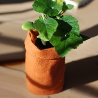 Grow Your Own - Bag Plants - Grow Your Own Gifts