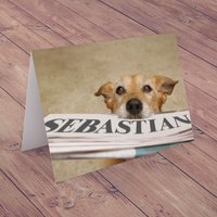 Personalised Card - Dogs Newspaper - Newspaper Gifts