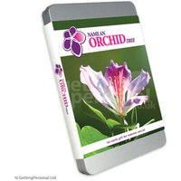 Name an Orchid Gift Box