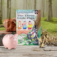 Personalised Ladybird Book For Children - The Three Little Pigs - Pigs Gifts