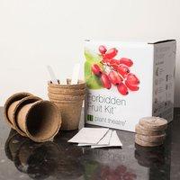 Grow Your Own Forbidden Fruit Kit - Fruit Gifts