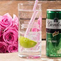 Personalised Highball Glass With Gordon's Gin & Tonic Can -