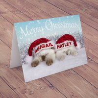 Personalised Card - Christmas Santa Kittens - Kittens Gifts