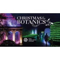Christmas at the Botanics