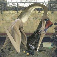Image of Semantics by Rhadoo Vinyl Album
