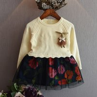 Sweet Knit Long-sleeve Mesh-layered Floral Dress for Baby and Toddler Girls