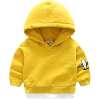 Baby and Toddler Boy's Solid Airplane Hoodie