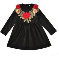 Gorgeous Embroidered Flower Long-sleeve Dress in Black for Baby and Toddler Girl