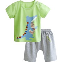 Baby Boy's Cute Dinosaur Short-sleeve Tee and Shorts Set