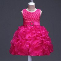 Lovely Lovely Mesh-layered 3D Flower Dress for Girls