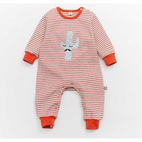 Baby's Striped Cacti Long Sleeve Jumpsuit