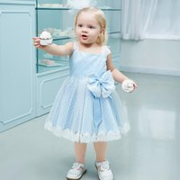 Toddler Girl Lace Mesh Dress