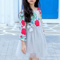 Pretty Floral Mesh Layered Dress