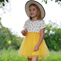 Summer & Autumn Lemon Print Girl's Mesh Dress