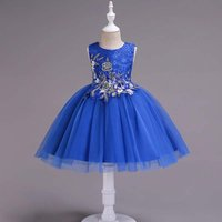 Exquisite Embroider Flower Sleeveless Tulle Party Dress for Girl