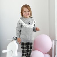 Cute Lion Design Sweater Pullover for Baby