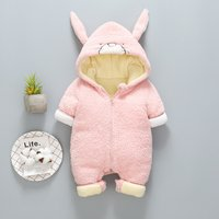 Warm Rabbit Design Embroidered Fleece Hooded Jumpsuit for Baby