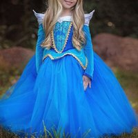 Fairy Tale Princess Overlay Dress in Blue for Girls