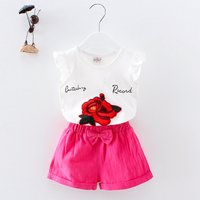 2-piece Beautiful Floral Print Tee and Solid Shorts for Baby and Toddler Girls