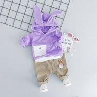 Casual 2-piece Bunny Design Hoodie and Applique Pants Set