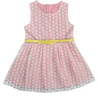 Sweet Daisy Lace Sleeveless Dress for Baby and Toddler Girls
