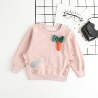 Casual Ruffle detail Long-sleeve Pullover for Baby and Kid