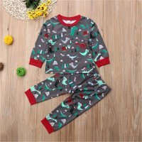 2-piece Cute Dinosaur Patterned Long-sleeve Top and Pants Set for Baby and Kid