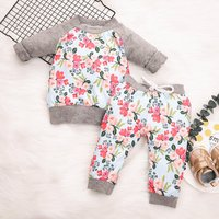Beautiful Flower Printed Long-sleeve Top and Pants Set for Baby