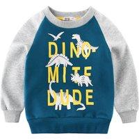 Stylish Dinosaur Print Color Blocked Long-sleeve Pullover for Boy