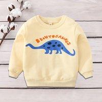 Baby/ Toddler Boy's Dinosaur Print Pullover