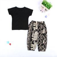 Baby / Toddler Solid Tee and Elephant and Flying Squirrel Pants Set