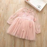 Baby/ Toddler Girl's Flower Embroidery Dress