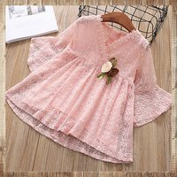 Toddler Girl's Floral Embroidered Lace Decor Dress