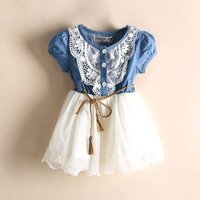 Toddler Girl's Chic Denim Lace Trimmed Tulle Dress