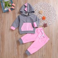 2-piece Casual Dinosaur Design Long-sleeve Pullover and Pants Set