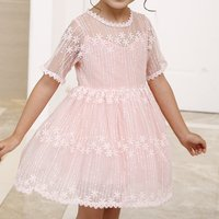 Beautiful Flower Embroidered Short-sleeve Dress in Pink