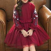 Stylish Flower Embroidered Mesh Layered Dress