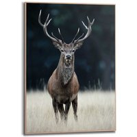 artprint Slim Frame Wood 50x70 Deer