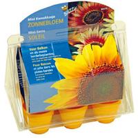Buzzy seeds mini kweekkasje zonnebloemen